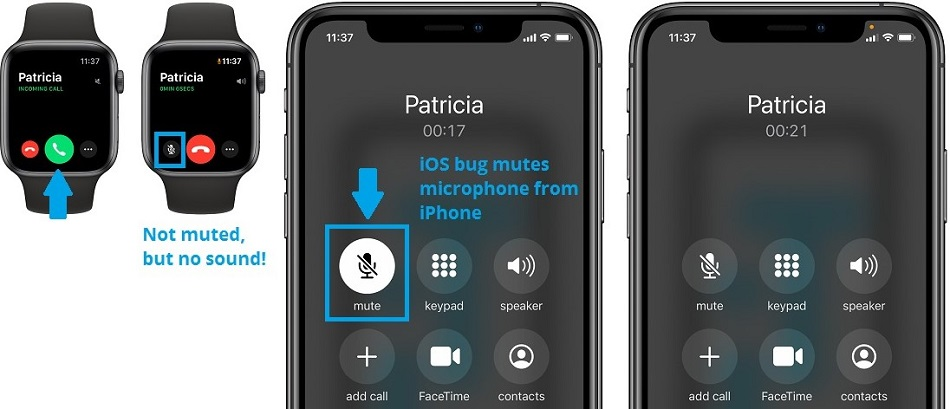 What You'll Need to Clean and Fix Apple Watch Microphone